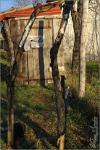 Harkályeleséggel ellátott beszállófák a téli madáretető mellett - 2012. december, Tolnanémedi