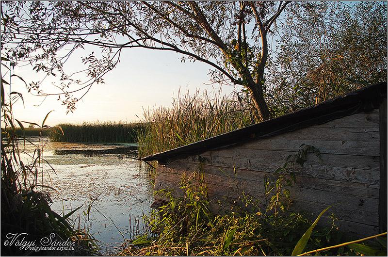 Vízparti leskunyhó - 2018. szeptember, Pellérd