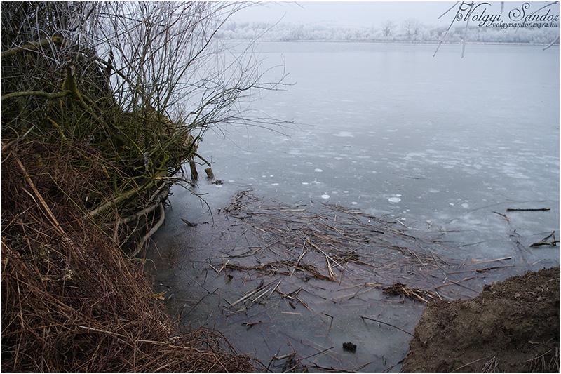 Befagyott tó - 2020. január - Dél-Zselic
