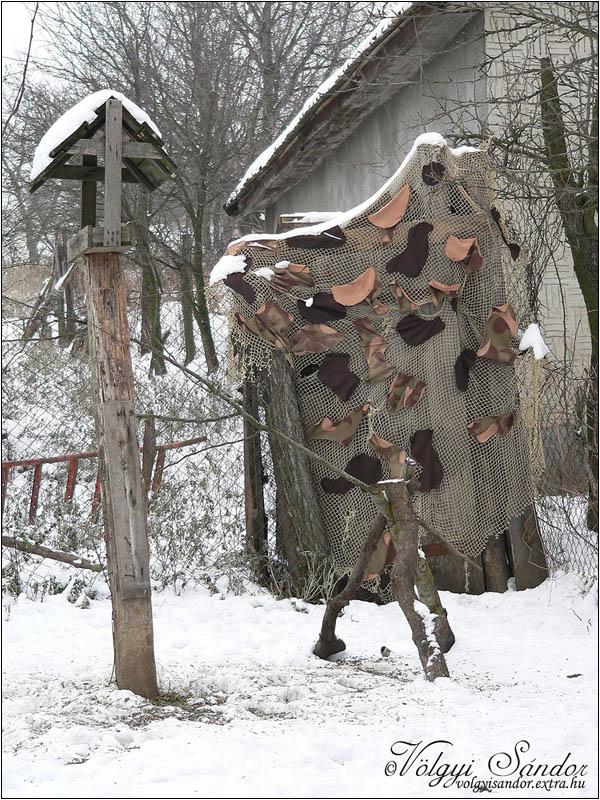Az első madáretetős les - 2007. december, Tolnanémedi