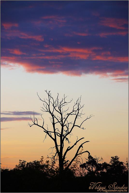 Hajnalban - 2007. július, Nagydobsza