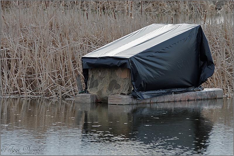 Úszó les - 2016. március, Pellérd