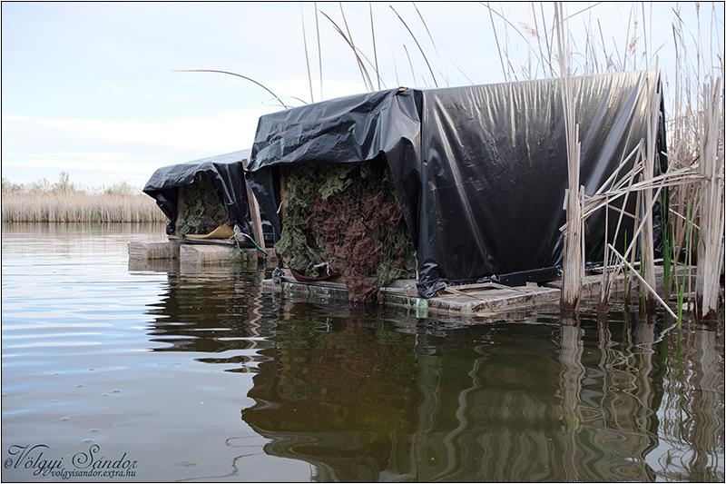 Úszó lesek - 2021. április, Pellérd